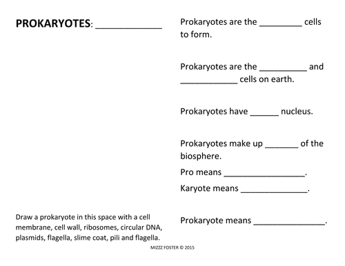 Prokaryote Bacteria Worksheets and Answer Key by mizzzfoster – Prokaryote Coloring Worksheet