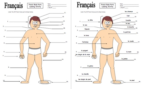French Body Parts Diagram To Label With 20 Body Parts By