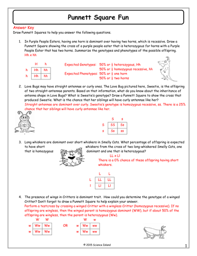 Worksheet Monohybrid Genetics Problems Answer Key inheritance activities genetics terminology and punnett squares by scienceisland teaching resources tes