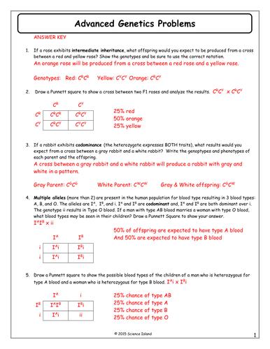 Genetics Blood Types Worksheet Answers | Healthy HesongBai