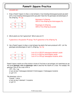 Worksheets Punnett Square Practice Worksheet Answers inheritance activities genetics terminology and punnett squares 7 square practice answer key docx
