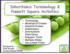 Inheritance Activities: Genetics Terminology and Punnett Squares by ...