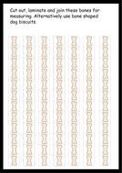 Dinosaur-measuring-bones.pdf