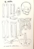 skeleton-puppet.jpg