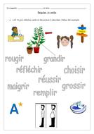 3a-word-pic-matching--ir-reg-verbs.docx