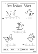 FRENCH - Mini Beasts - Des Petites-Bêtes - Worksheets