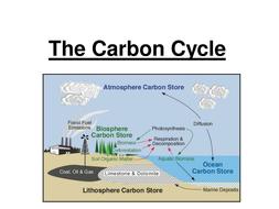Gcse carbon nitrogen cycle by jam2015 teaching resources tes gcse carbon nitrogen cycle ccuart Choice Image