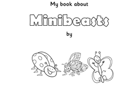 Minibeasts / Insects for EYFS / KS1: PowerPoint lessons