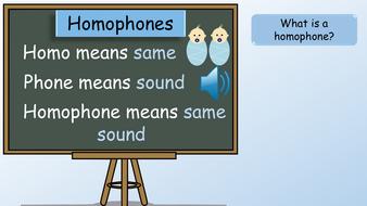 preview-year-3-homophones-no-presenter.pdf
