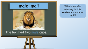 preview-year-3-homophones-no-presenter.27.pdf