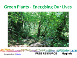 Green Plants – Energising Our Lives