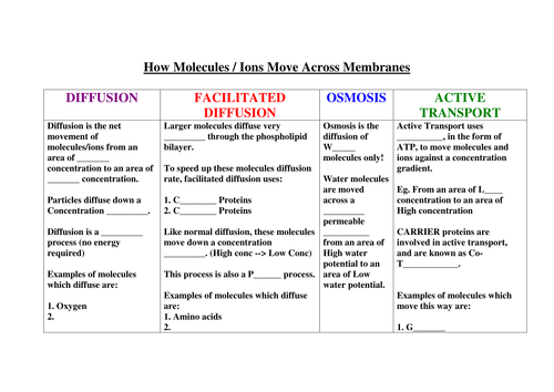 New AQA AS Biology cell membrane diffusion fac diff osmosis – Osmosis Diffusion Worksheet