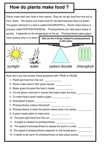 Photosynthesis by Hannahbaylon1992 - Teaching Resources - Tes