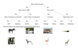 Using sorting branch diagrams full lesson by megaalex66 teaching sorting diagram la mac ccuart Choice Image