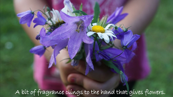 flowers.pdf