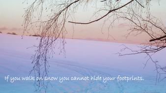 footprints-in-snow.pdf