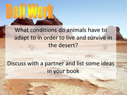 Are Camels the Ultimate Desert Survivors?