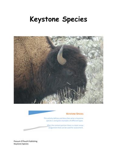 keystone species by bsosnicki teaching resources tes. Black Bedroom Furniture Sets. Home Design Ideas