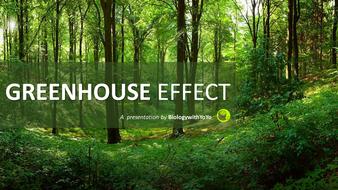 Greenhouse Effect Presentation