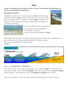 L1-Waves-and-Tides.docx