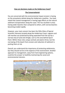 The-Conservationist.docx