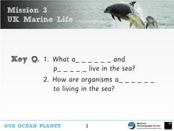 UK ocean animals KS2 Science