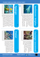 SS8d-Coral-Life-fact-sheet---OOP-Mission-8.pdf