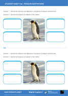 SS10a-Penguin-adaptations---OOP-Mission-10.pdf