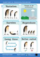 SS11b-Penguin-evolution-card-sort---OOP-Mission-11.pdf