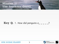 Evolution and penguins KS2 Science