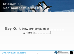 Slideshow-10---The-Southern-Ocean-and-penguin-adaptation-with-Dr-Lucy-Quinn---OOP-Mission-10.pdf