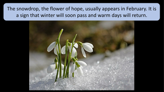 february-preview-slide-3.pdf