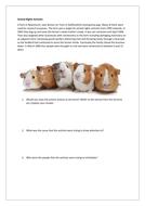 Animal-Rights-Scenario.docx