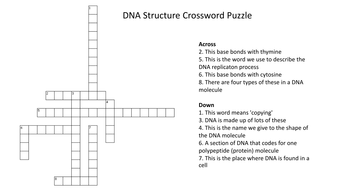 Dna structure crossword puzzle with answers by dna structure crossword puzzlepdf ccuart Image collections