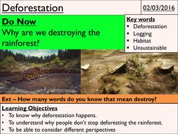 6---Deforestation.pptx