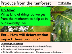 12---Produce-from-the-rainforest.pptx