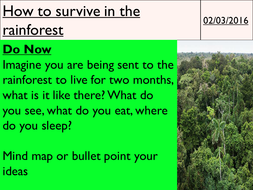 15---How-to-survive-in-the-rainforest.pptx