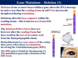 3.8.1 Gene and Chromosomal Mutations by RGeorge15 - Teaching ...