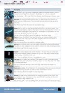 Subject-Update-3-Arctic-life.pdf