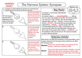 GCSE-Biology-Synapses-Answer-Sheet.pdf