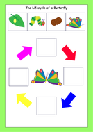 14Lifecycle-of-a-butterfly.pdf