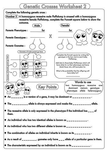 High School Biology: Inheritance and Genetic Crosses by beckystoke ...