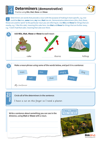 Year 4 Spag Interactive Teaching Pack Determiners By Tesspag