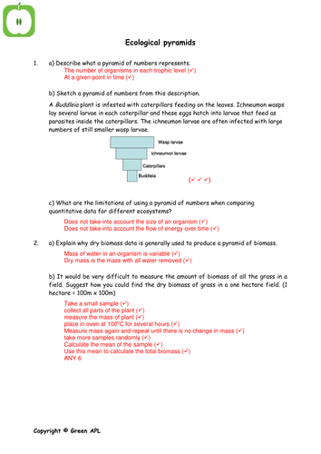 Biology Revision Worksheets Covering Year 2 A2 Biology By