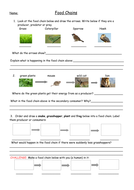 Food Chains Full Lesson with Worksheets, Plan and Food Web Extension ...