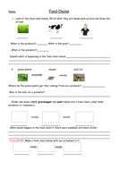 Food chains full lesson with worksheets plan and food web extension food chains full lesson with worksheets plan and food web extension year 2 ibookread Download