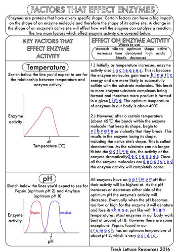 Biology Worksheets Gcse Pdf Proga Info