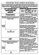 GCSE-Biology-Enzyme-Activity-Worksheet.pdf