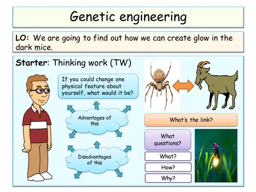 selective breeding and genetic engineering essay