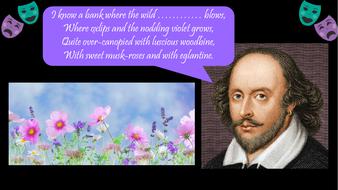 preview-images-william-shakespeare-quotes-quiz-22.pdf